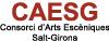 Consorci d'Arts Escèniques de Salt-Girona