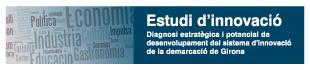 Diagnosi estratègica i potencial de desenvolupament del sistema d innovació de la demarcació de Girona