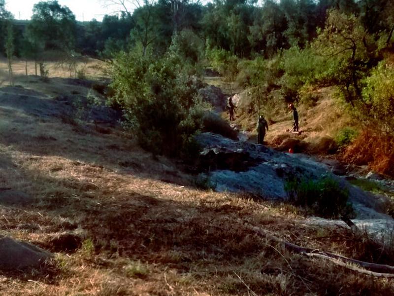 Foto 2 : <p>L&rsquo;Obra Social &ldquo;la Caixa&rdquo;, la Diputaci&oacute; de Girona i el Consorci Salines Bassegoda recuperen connectors ecol&ograve;gics&nbsp;</p>