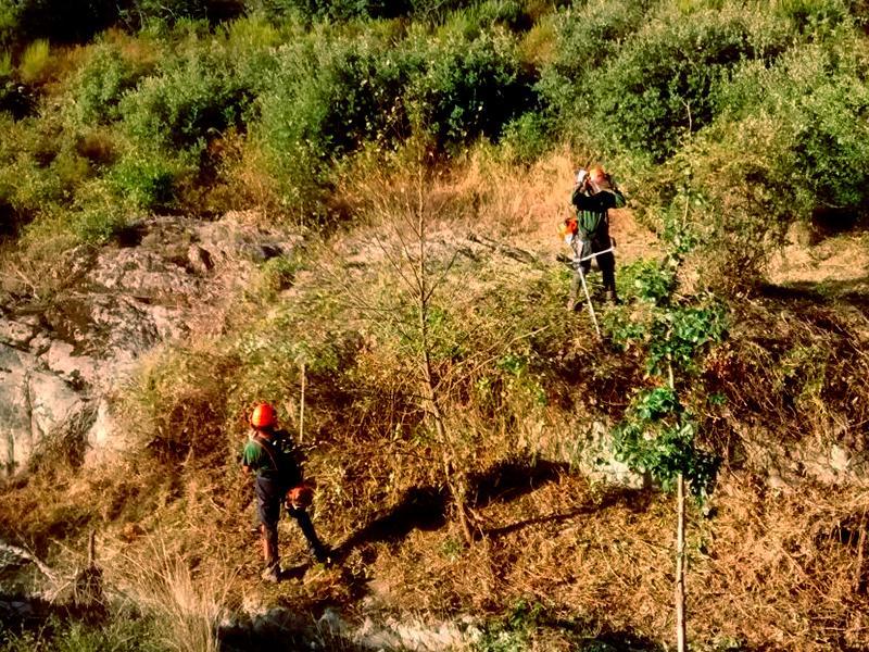 Foto 1 : <p>L&rsquo;Obra Social &ldquo;la Caixa&rdquo;, la Diputaci&oacute; de Girona i el Consorci Salines Bassegoda recuperen connectors ecol&ograve;gics&nbsp;</p>