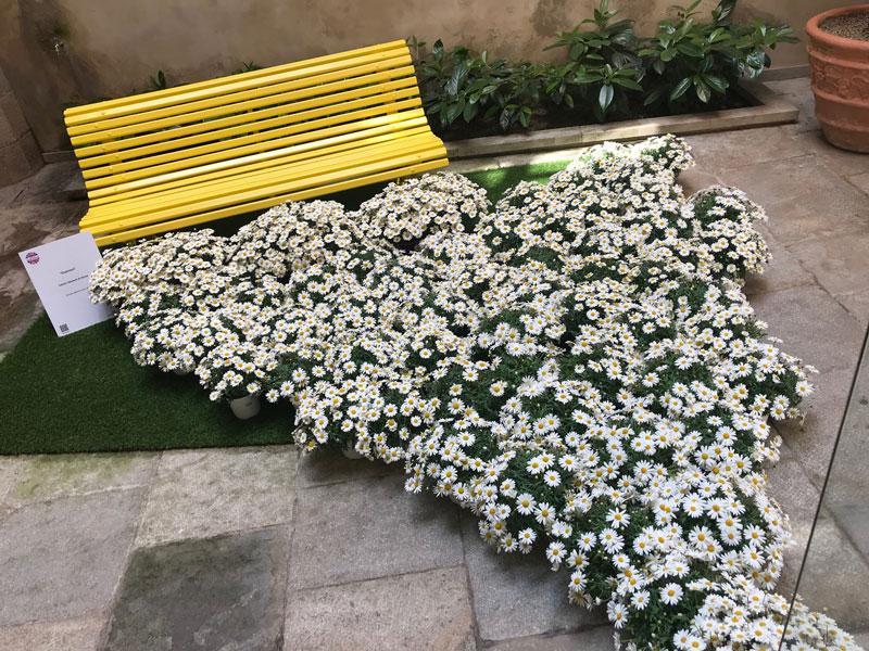 Foto 4: Exposició floral - Esperant