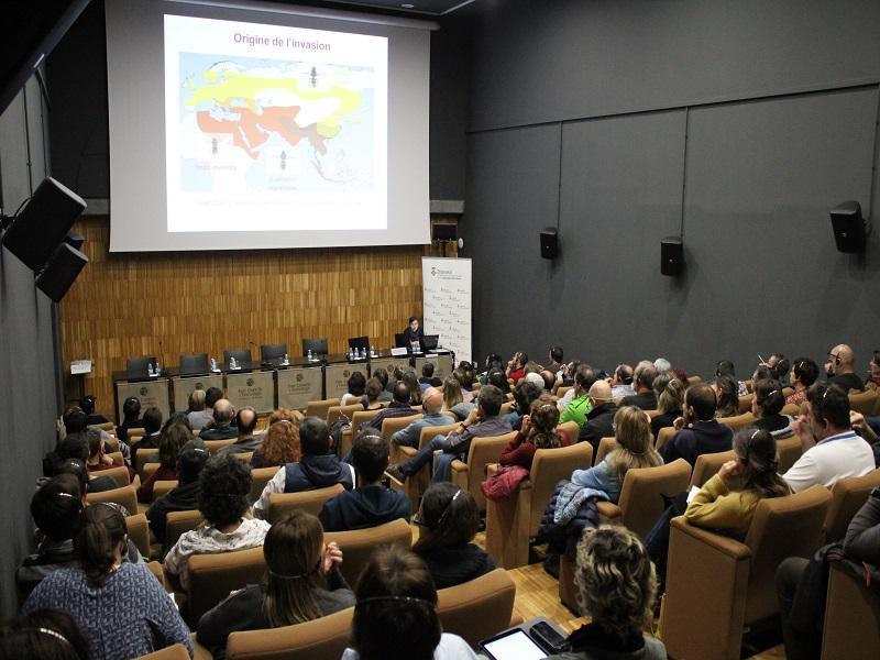 Foto 4: La Diputació organitza una jornada amb l'objectiu que les administracions locals millorin el coneixement i la gestió de la vespa asiàtica
