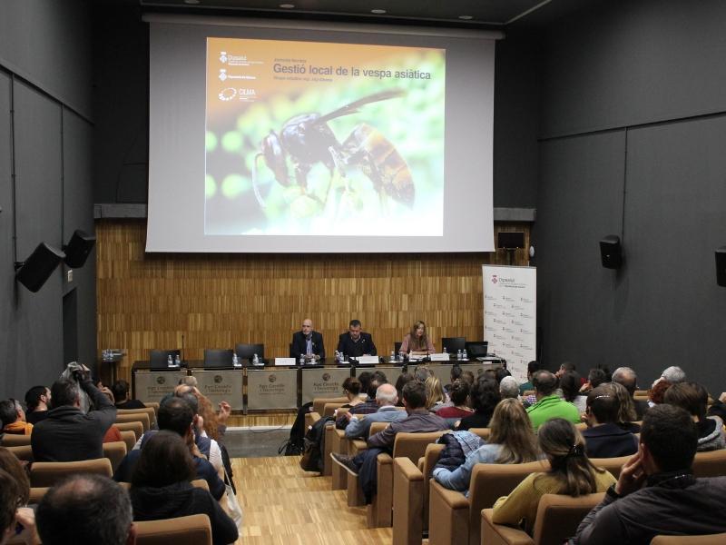 Foto 1 : La Diputació organitza una jornada amb l'objectiu que les administracions locals millorin el coneixement i la gestió de la vespa asiàtica
