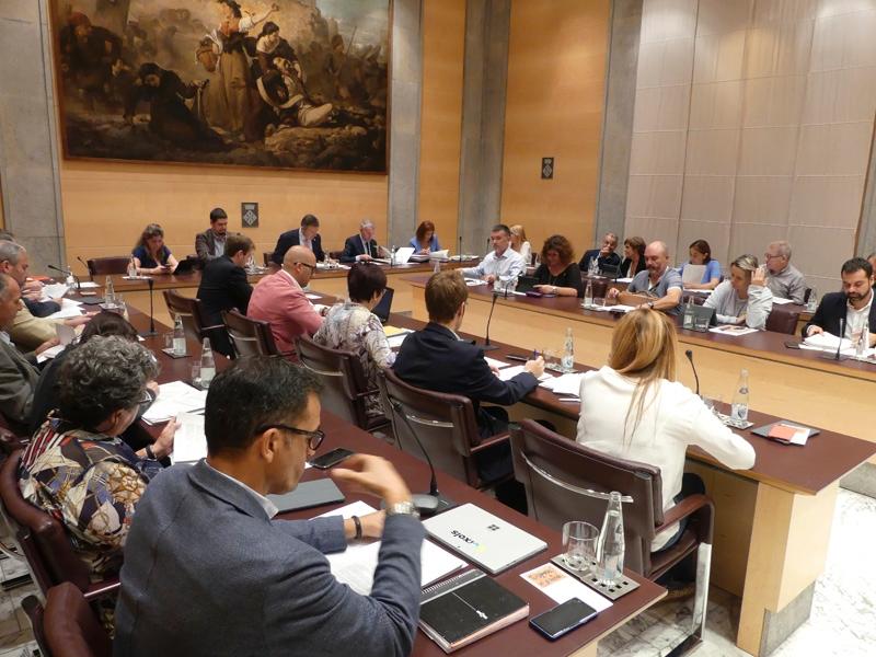 Foto 3 : El primer ple ordinari de la legislatura s'inicia amb una declaració institucional sobre el canvi climàtic