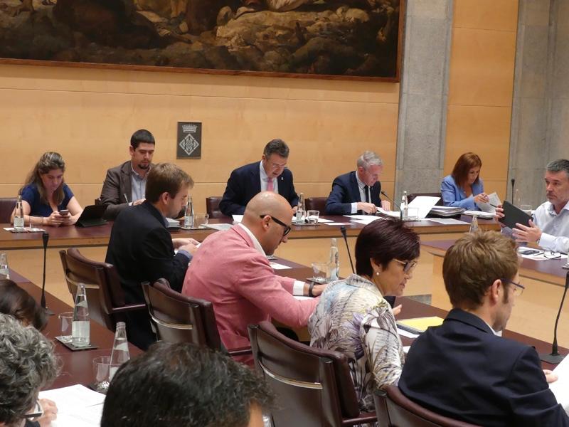 Foto : El primer ple ordinari de la legislatura s'inicia amb una declaració institucional sobre el canvi climàtic