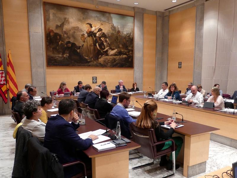 Foto 3 : <p>La Diputaci&oacute; de Girona aprova les bases de diverses subvencions en mat&egrave;ria d&rsquo;habitatge i medi ambient</p>