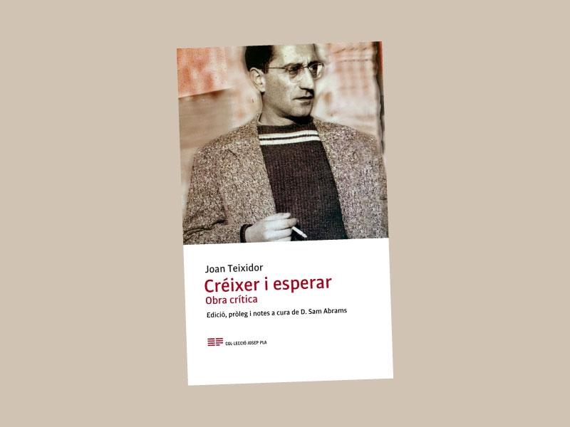 """Foto : <p>S'ha publicat el quaranta-sisè volum de la col·lecció """"Josep Pla"""", dedicat a la crítica literària de Joan Teixidor</p>"""