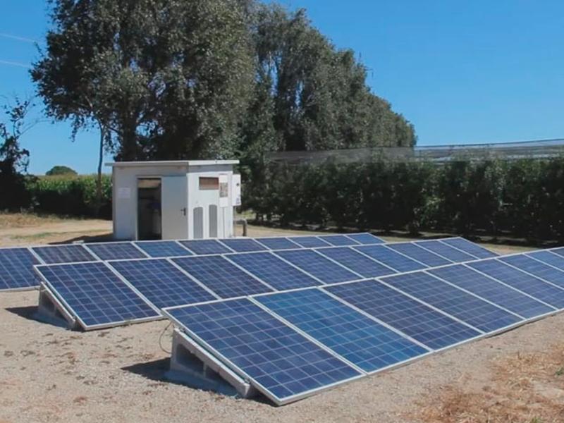 Foto : <p>Reg agrícola amb energia solar fotovoltaica, en les Jornades Fructícoles d'Estiu de Mas Badia</p>