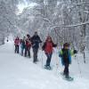 Rutes amb raquetes de neu