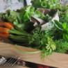 CAN SERRÀ 1786 -agricultura ecològica i venta directa-