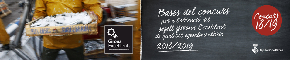 Bases Concurs Girona Excel·lent 2018-2019