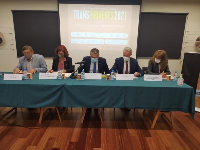 Foto : El vicepresident segon, Albert Piñeira, en la inauguració del XII Col·loqui Internacional d'Estudis Transpirinencs</p
